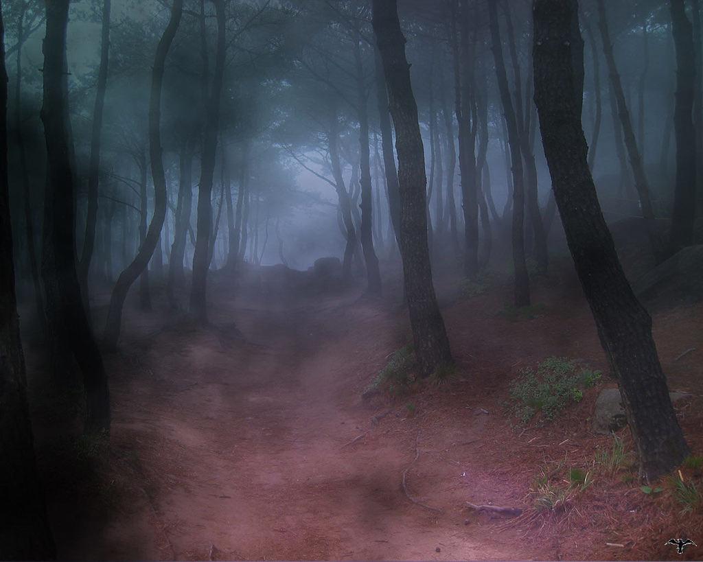 Mazmorra Gris: La legenda de Dragora [ROL] - Página 3 Forest_fog
